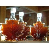 Maple & Elm Fragrance Oil