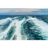Sea Marine
